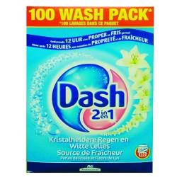 LESSIVE POUDRE DASH 100 DOSES