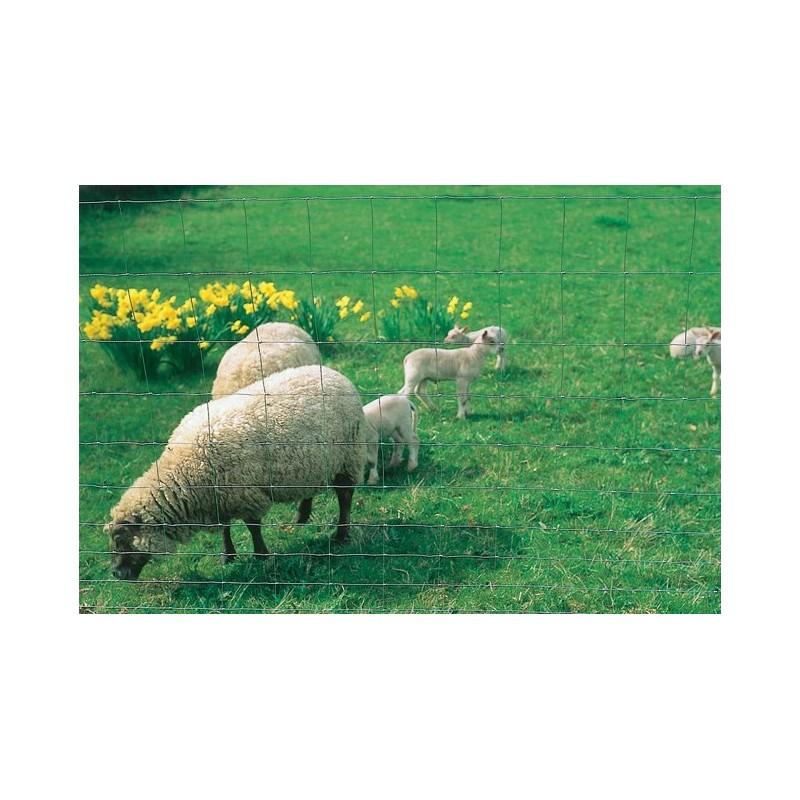grillage mouton p le vert bergerac. Black Bedroom Furniture Sets. Home Design Ideas