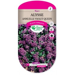 ALYSSE ANNUELLE VIOLET QUEEN cat2