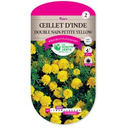 OEILLET D'INDE DOUBLE NAIN PETITE YELLOW cat2