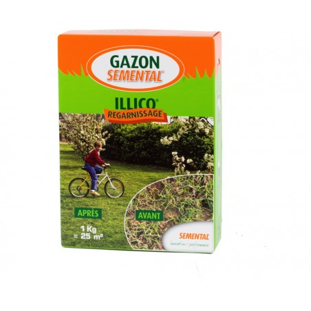 GAZON SPECIAL REGARNISSAGE ILLICO 1 KG