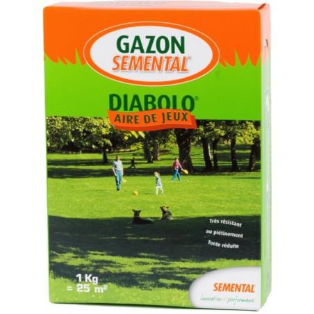 GAZON SPORT ET AIRE DE JEUX DIABOLO 1KG