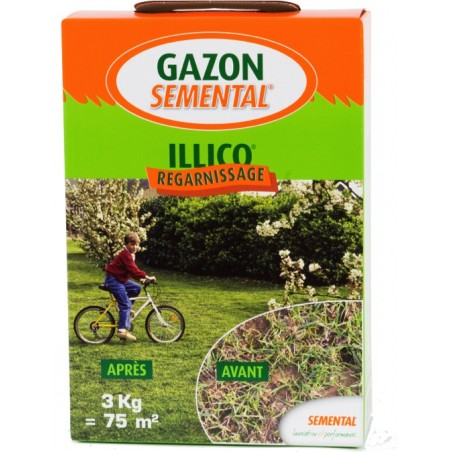 GAZON SPECIAL REGARNISSAGE 3 KG