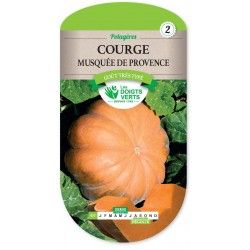 COURGE MUSQUEE DE PROVENCE cat2