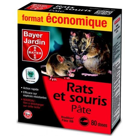 RATS SOURIS PATE PRET A L EMPLOI 80X10G