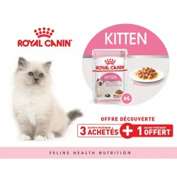 ALIMENT CHATONS KITTEN