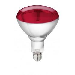 ?Lampe verre trempé Philips