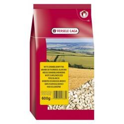 Graines de tournesol blanches - Sac de 600 g