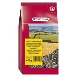 Graines de tournesol strié - Sac de 600 g