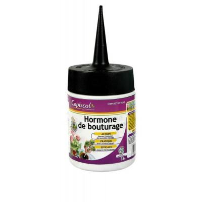 Hormones de bouturage 5x5gr pole vert evreux - Hormone de bouturage ...