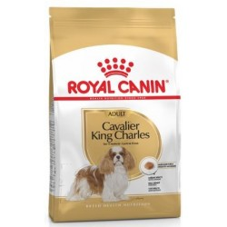 CROQUETTES CHIEN CAVALIER KING CHARLES ADULT 3KG ROYAL CANIN