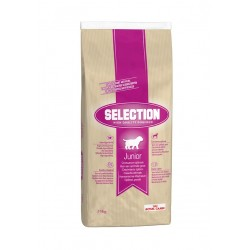 ALIMENT CHIEN SELECTION JUNIOR 15KG