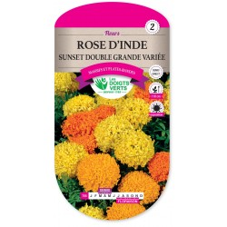 ROSE D'INDE SUNSET DOUBLE GRANDE VARIÉE cat2