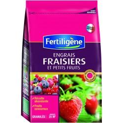 ENGRAIS FRAISIERS - PETITS FRUITS 800G