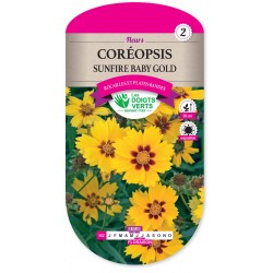 COREOPSIS SUNFIRE BABY GOLD CAT2