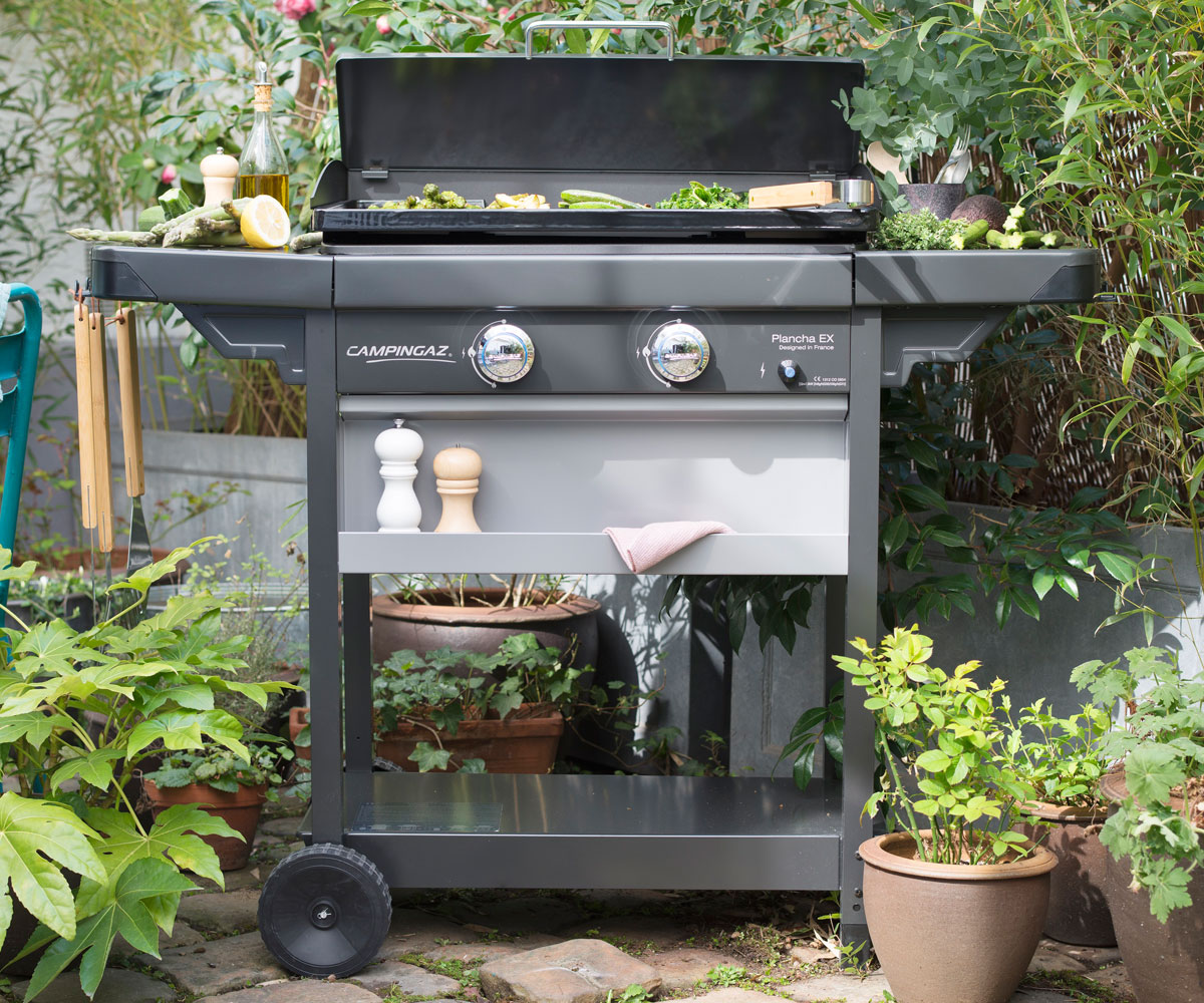 Barbecue gaz plancha et grill