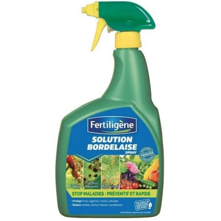 SOLUTION BORDELAISE PAE SPRAY 800ML