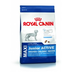 ALIMENT CHIEN MAXI JUNIOR ACTIVE 15KG