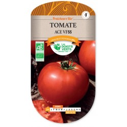 TOMATE ACE 55 VF cat4