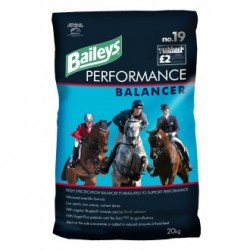 ALIMENT CHEVAL PERFORMANCE BALANCER 20KG