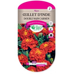 OEILLET D'INDE DOUBLE NAIN CARMEN