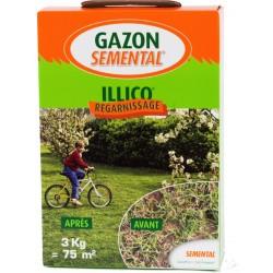 GAZON SPECIAL REGARNISSAGE 3 KG