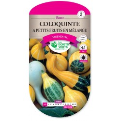 COLOQUINTE A PETITS FRUITS EN MELANGE cat2