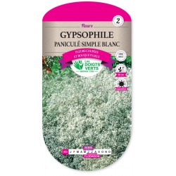GYPSOPHILE PANICULE SIMPLE BLANC cat2