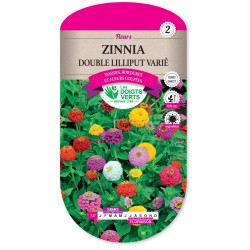 ZINNIA DOUBLE LILLIPUT VARIÉ cat2