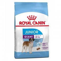 CROQUETTES POUR CHIEN GIANT JUNIOR 3.5KG ROYAL CANIN