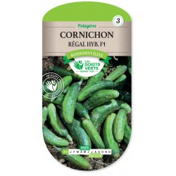 CORNICHON RÉGAL HYBRIDE F1 cat3
