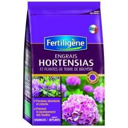 ENGRAIS HORTENSIAS 800G