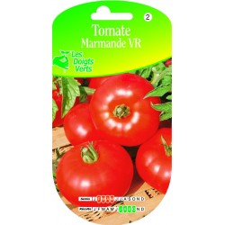 TOMATE DE MARMANDE HATIVE cat2