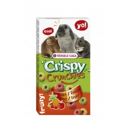 BISCUITS FRUITS POUR LAPINS ET RONGEURS 75G