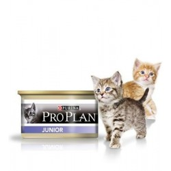 PROPLAN CHAT HUMIDE JUNIOR 85G