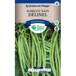 HARICOT DELINEL 250 GR CatD