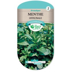 MENTHE OFFICINALE cat2