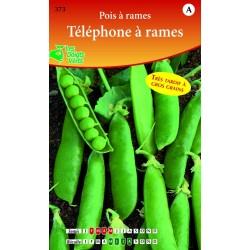 POIS RAME TELEPHONE RID  250G catA