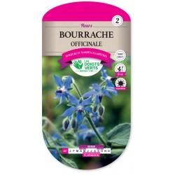 BOURRACHE OFFICINALE CAT2