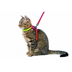 HARNAIS CHAT RAINBOW 10MM / 120CM